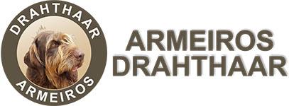 Drahthaar – Comércio de Artigos Desportivos, Lda.